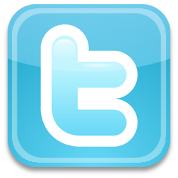 How to use Twitter in your social media marketing campaign