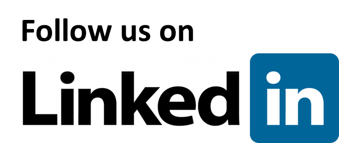 LinkedIn Company Follow Button