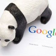 A look at the Panda SEO updates