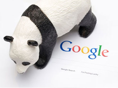A look at the Panda SEO updates