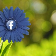 Reduce, Reuse, Recycle with Facebook Retargeting