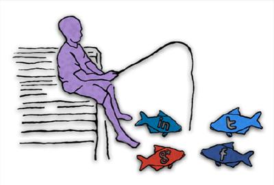 social fish.fw