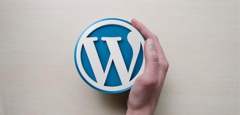 6 Essential WordPress plugins for your new website design