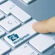The 5 best WordPress plugins