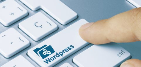 The 5 best WordPress plugins